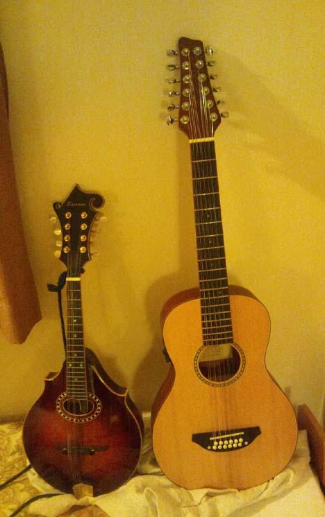 今年最後の買い物は12弦ミニサイズギター