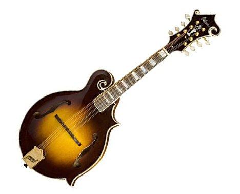 大人になってから楽器を始める場合のおすすめを。弦楽器:マンドリン(Mandolin)