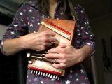 楽器動画:Cigar Box Autoharp (シガーボックスオートハープ)