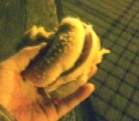 25時半。とりあえず栄養摂取。マクドのダブルチーズバーガーを頂く。