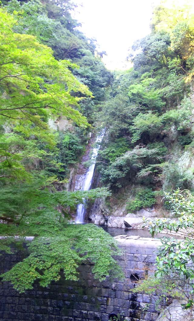 今日は大忙し。布引の滝散策から音楽プロジェクトの打ち合わせへ。
